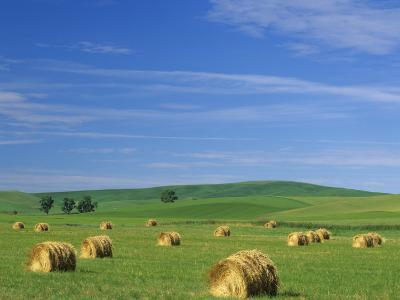 Hay Bales and Rolling Hills of Palouse Farm Country in Eastern Washington, USA