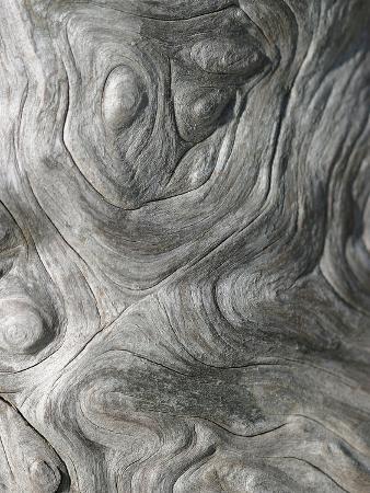 Driftwood Patterns