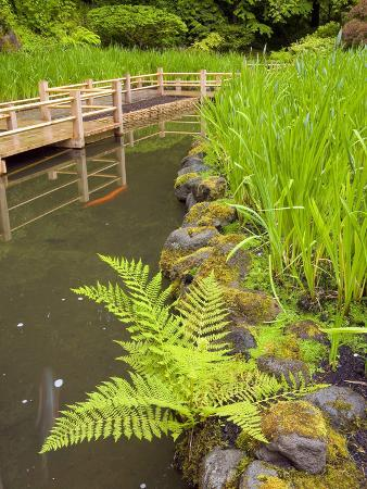 Zig Zag Bridge and Iris, Japanese Garden, Portland, Oregon, USA
