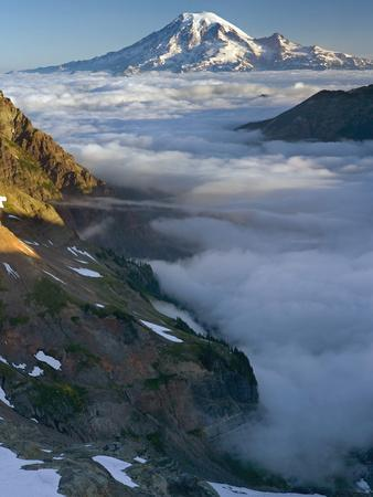 View of Mt. Rainier Above the Clouds from the Goat Rocks Wilderness, Washington, USA