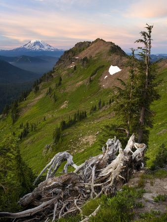 Goat Rocks Wilderness with a View of Mt. Adams from Goat Ridge, Washington, USA