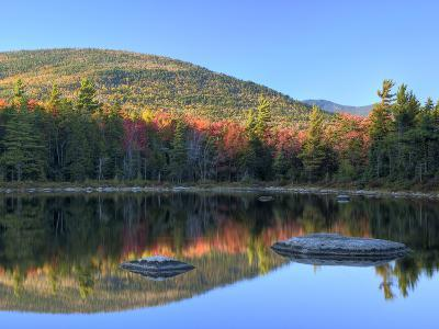 Rock and Tree Reflection, Lily Pond, White Mountain National Forest, New Hampshire