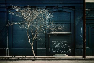Street Scene in USA