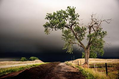 Rural Landscape with Dramatic Sky