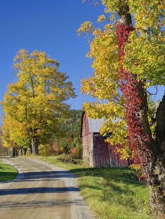 Road Beside Classic Rural Barn/Farm in Autumn, New Hampshire
