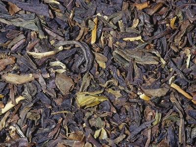 Formosa Oolong or Black Dragon Tea, Cross Between Green and Black Teas