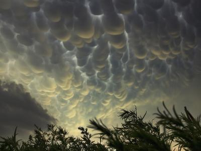 Mammatus Clouds Bubble Downwards over the Open Prairies Heralding the Approach of Severe Storm