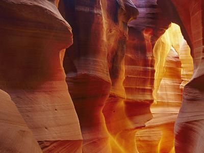 Corkscrew or Slot Canyon Sandstone Formations Bathed in Reflected Light Near Page, Arizona, USA