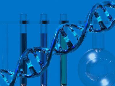 DNA Molecular Model Showing Weak Hydrogen Bond Between the Bases