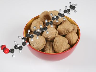 Bowl with Walnuts with a Molecular Model of an Omega-3 Fatty Acid