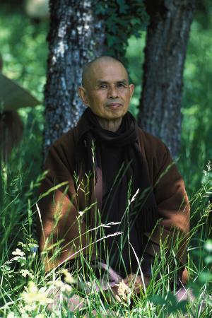 Thich Nhat Han at Plum Village