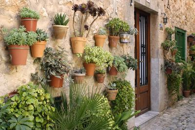 Potted Plants on the Wall of a House, Valldemossa, Mallorca, Spain