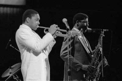 Wynton Marsalis (T Williams), Capital Jazz Festival, Rfh, London, 1988