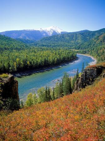 Autumn Colours and Katun River, Katunsky Zapovednik, Altai Mountains, Russia