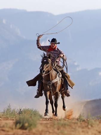 Cowboy Running with Rope Lassoo in Hand, Flitner Ranch, Shell, Wyoming, USA