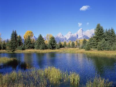 Snake River and Autumn Woodland, with Grand Tetons Behind, Grand Teton National Park, Wyoming, USA
