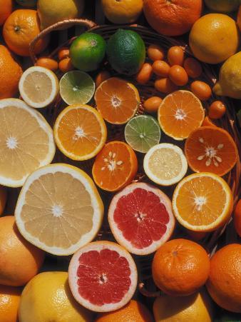 Citrus Fruits, Orange, Grapefruit, Lemon, Sliced in Half Showing Different Colours, Europe