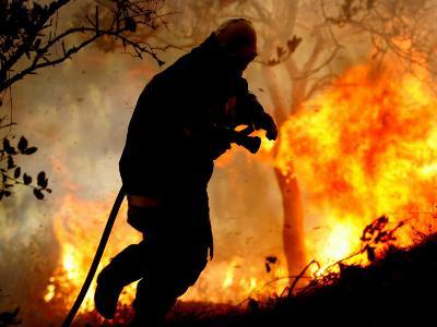 A Fire Fighter Retreats from a Forest Fire Near Fraldeu, Central Portugal