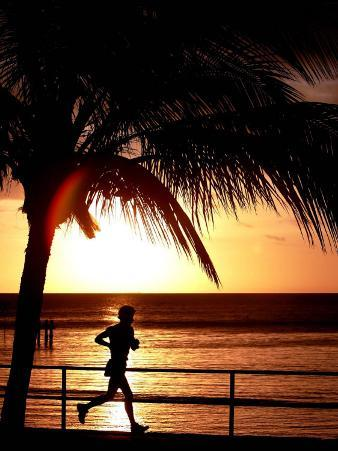 A Afternoon Runner Passes Under a Palm Tree as the Sun Sets Behind