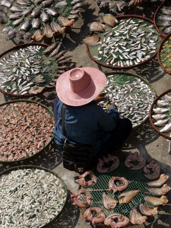 A Thai Woman Sells Dried Fish in Bangkok, Thailand, January 26, 2007