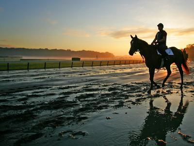 An Unidentified Horse and Rider on the Track at Sunrise at Belmont Park