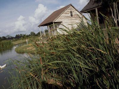 Houses Along the Louisiana Bayou are Seen