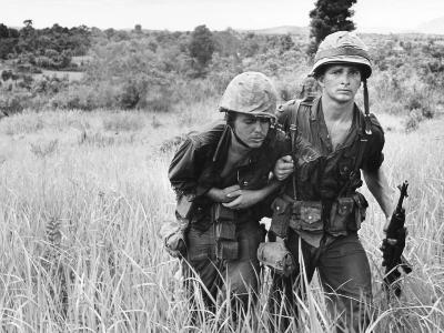 Vietnam War U.S. Wounded