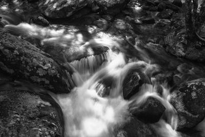 Roaring Fork Rapids BW