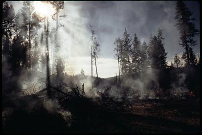 Granite Fire II
