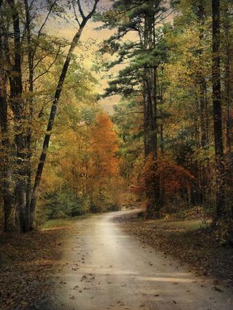 Autumn Forest 4