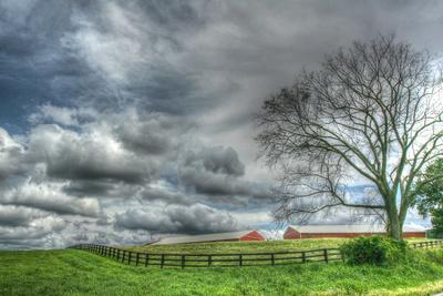 Paddock Storm