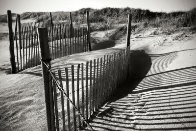 Dunes Fence IV