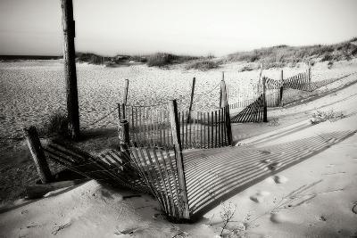 Dunes Fence I