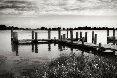 Lonely Dock I