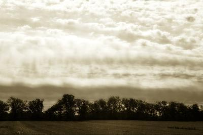 Clouds and Fields 1