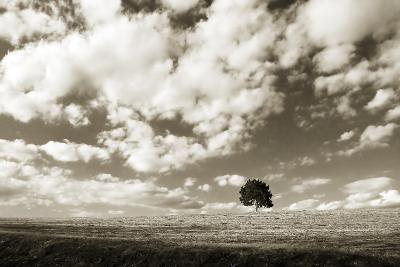 Cloudy Skies I