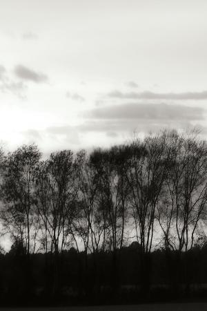 Winter Sunset BW IV