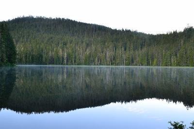Morning at the Lake V