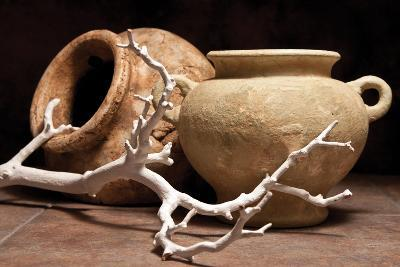 Pottery with Branch II