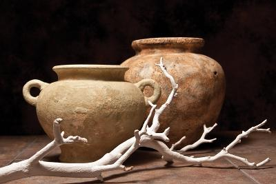 Pottery with Branch I