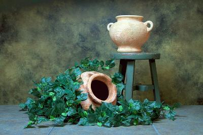 Pottery with Ivy I