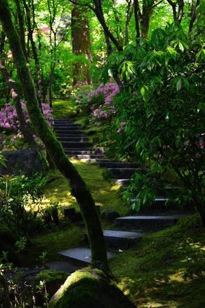 Garden Stairs II