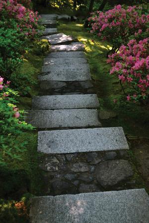 Garden Stairs I