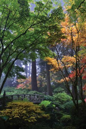 Japanese Gardens III
