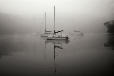 In the Fog - BW