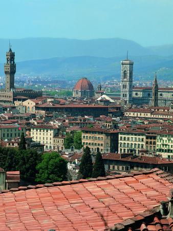 View of the Old City Centre of Florence