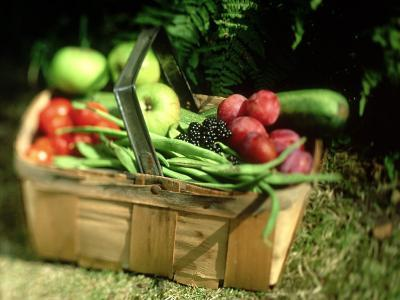 Fruit and Vegetables from the Garden, Kent
