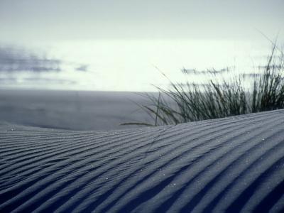 Sand Dune, New Zealand