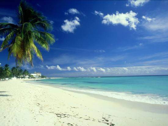 Beach Scene Barbados Photographic