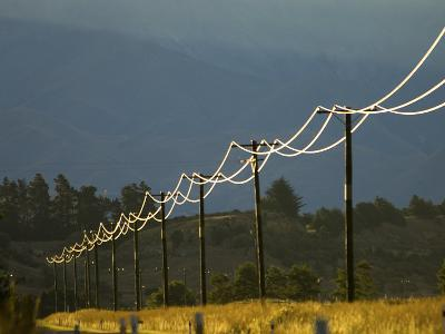 Power Lines by Road Side Reflecting Evening Light, New Zealand